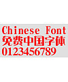 Hua Kang Songti W12 Font
