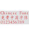 Hua Kang Shou jin W3 Font