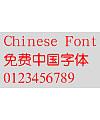 Mini Zhong yuan Font