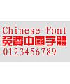 Richwin Zong yi Fan Font