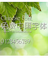 Calligrapher New Xi yuan ti Font