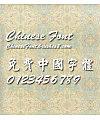 Calligrapher Xing kai Font