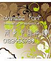 Chinese dragon Jin shi zhuan Font