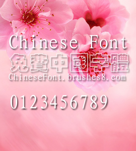 Classic Xi kong hei Font Classic Xi kong hei Font Traditional Chinese Font