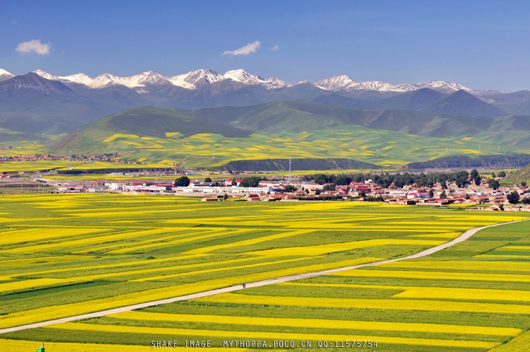 17 Beautiful China qinghai photography