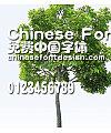 Han yi Hei mi ti Font