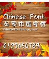 Han yi Ling xin Font