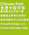 Fang zheng Yi hei Font-Simplified Chinese