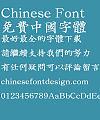 Iwata SeichouG Pro Font-Traditional Chinese