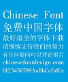 Sharp Song (Ming) Typeface Font-Simplified Chinese