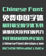Take off&Good luck Trend Rounded Chinese Font-Simplified Chinese Fonts