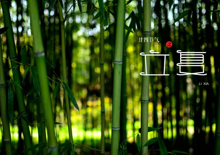 24 solar terms in traditional Chinese style font design
