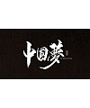 10P  Excellent Chinese traditional calligraphy art fonts