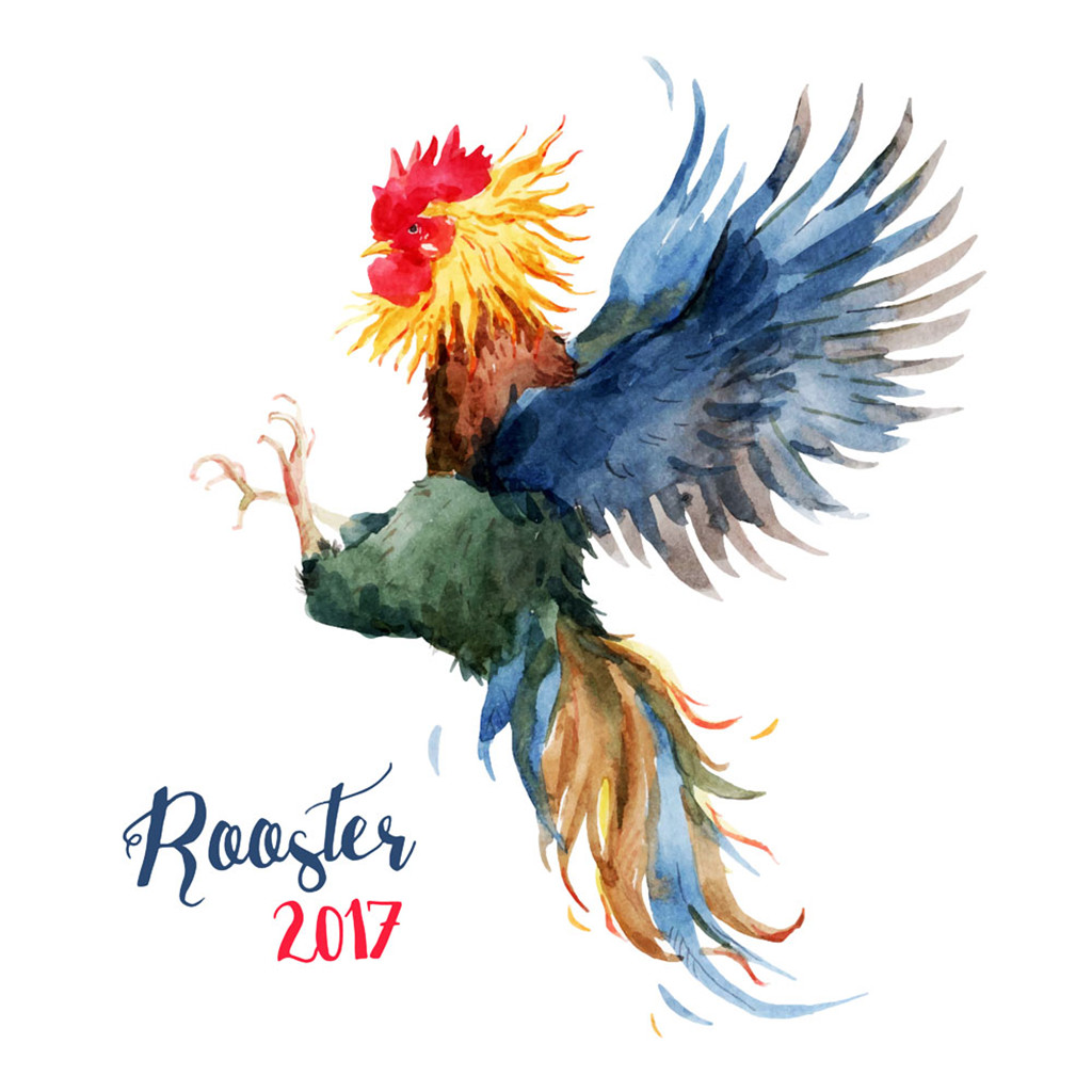 Super cool rooster watercolor graphics - esp free download