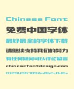 Zao Zi Gong Fang(Font manual mill) Quiet and elegant Song (Ming) Typeface Chinese Font -Simplified Chinese Fonts