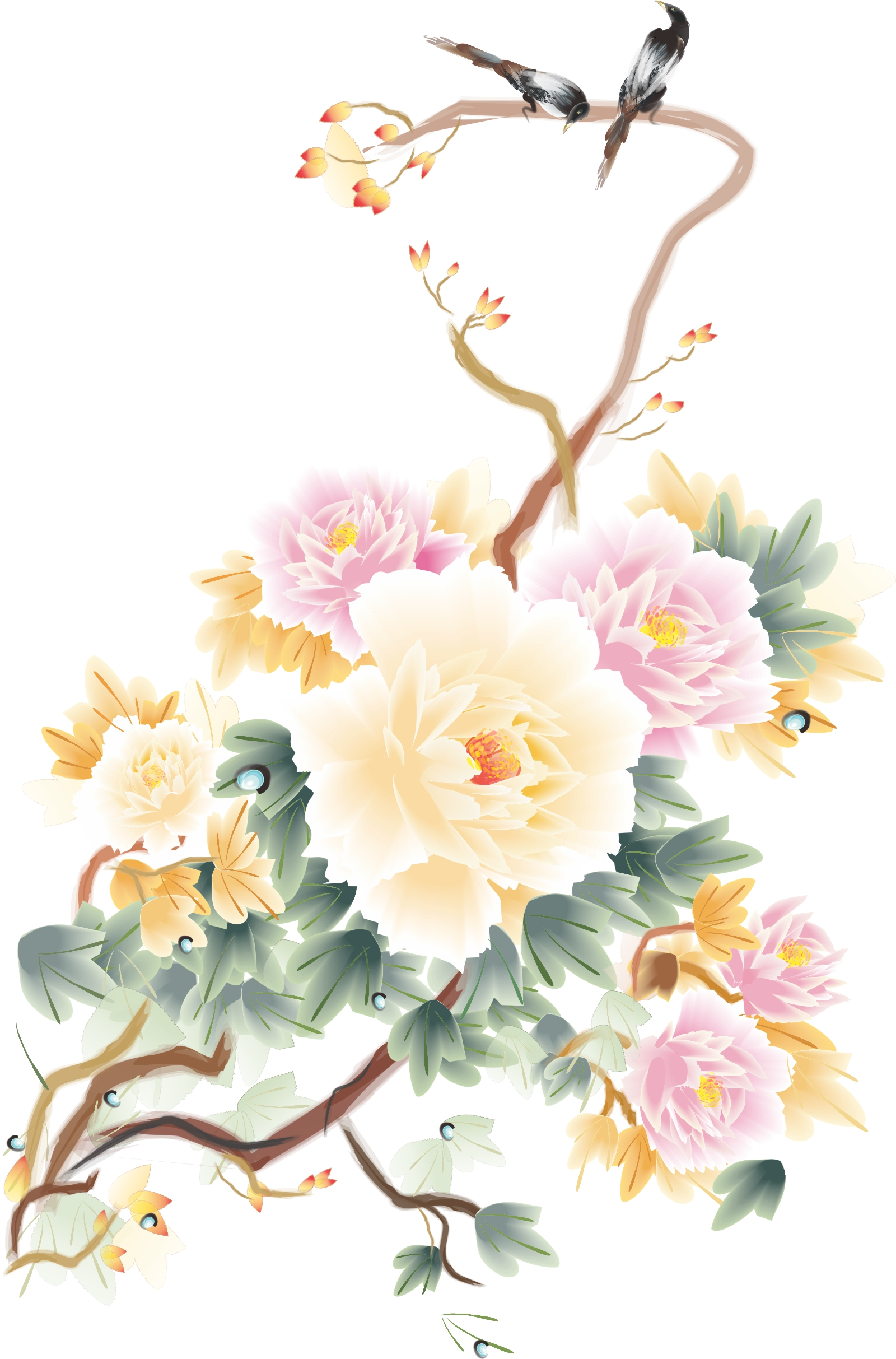 Peony flowers vector pictures China CorelDRAW Vectors CDR Free Download