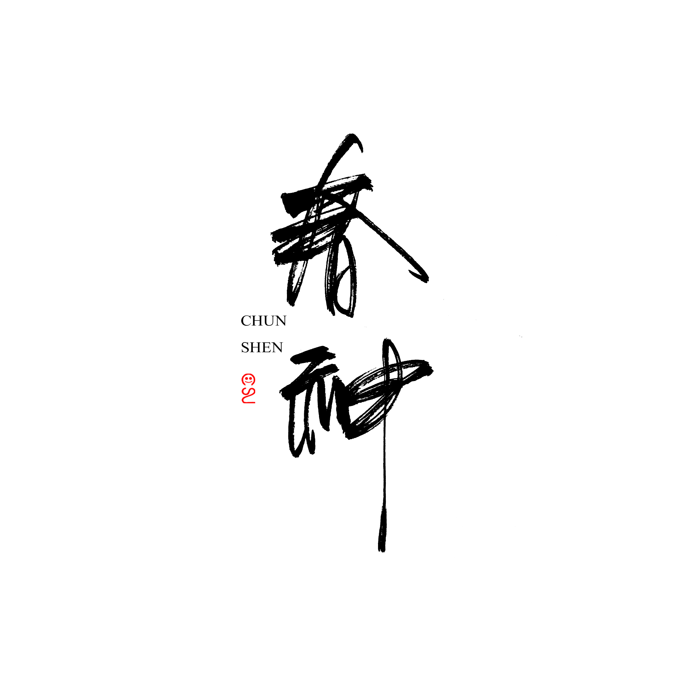 13P Chinese traditional brush font writing practice