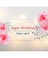 Aqua Grotesque Font Download