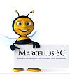 Marcellus SC Font Download