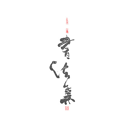 13P Chinese traditional calligraphy brush calligraphy font style appreciation #.262