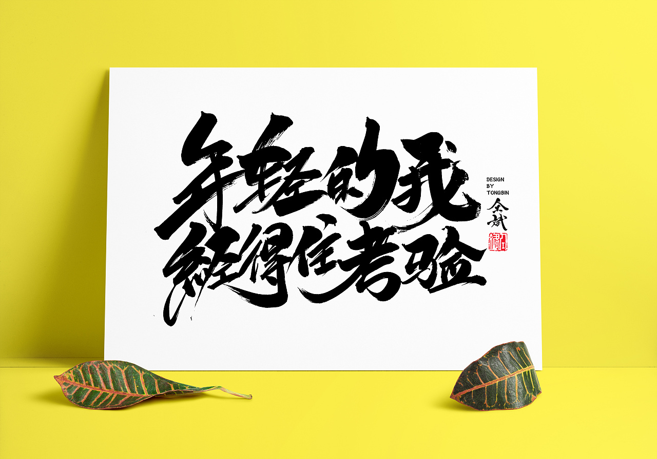 48P Chinese traditional calligraphy brush calligraphy font style appreciation #.487