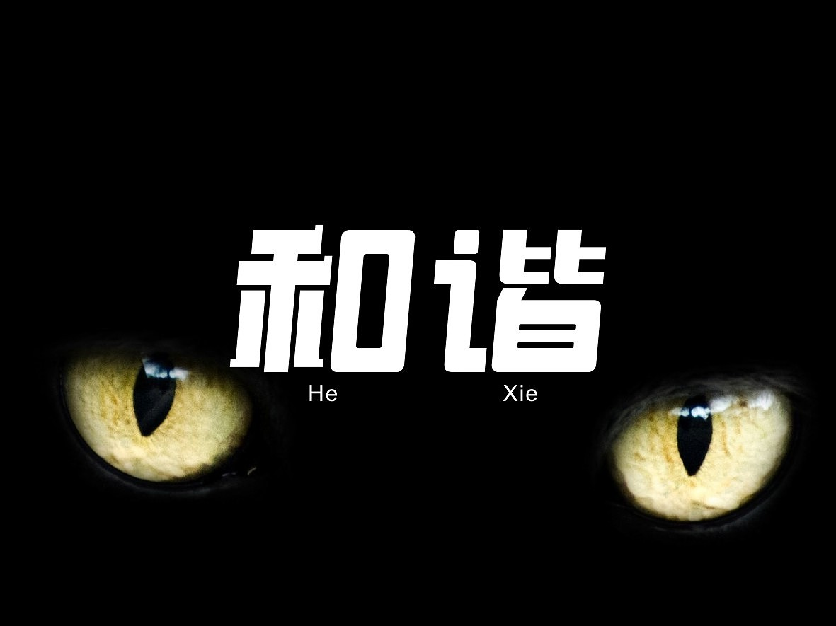 20P Creative Chinese font logo design scheme #.473