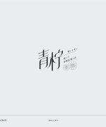 20P Creative Chinese font logo design scheme #.713