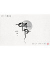 10P Chinese traditional calligraphy brush calligraphy font style appreciation #.843