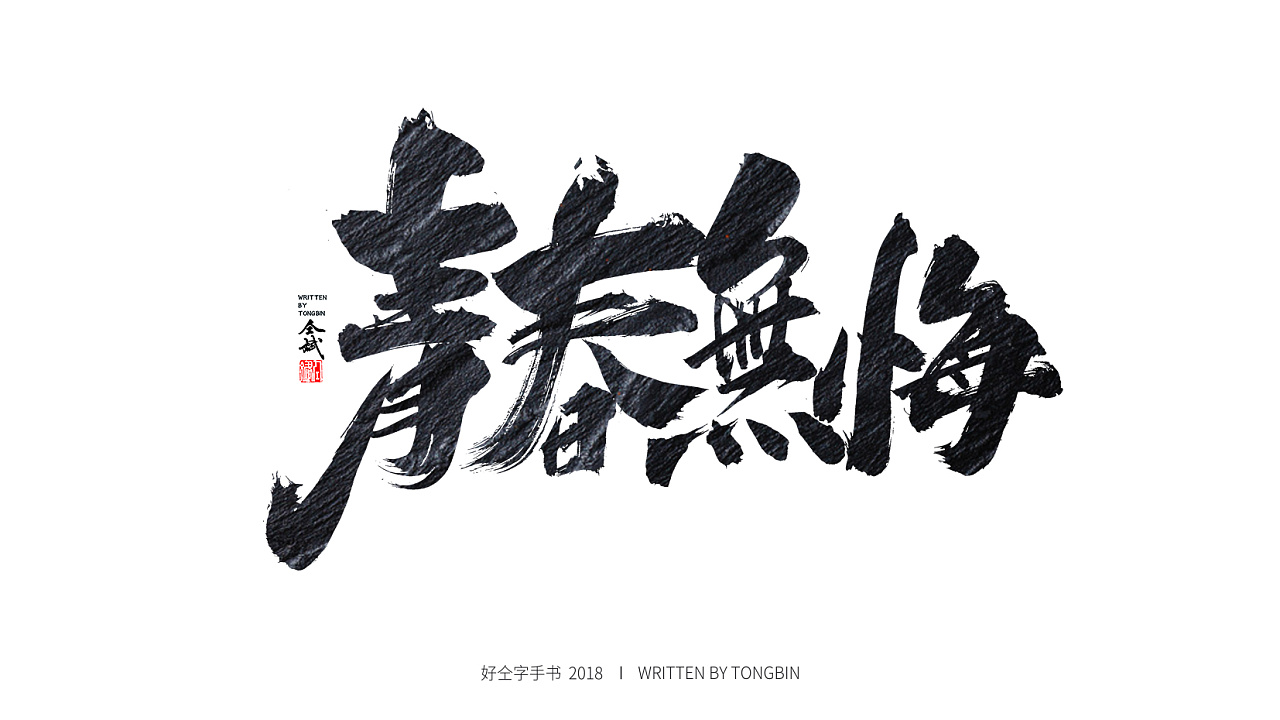 17P Chinese traditional calligraphy brush calligraphy font style appreciation #.910