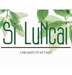 Permalink to SiLuNcai Font Download