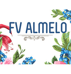 Permalink to FV Almelo Font Download