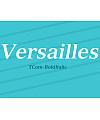 Versailles LT Com Bold Italic Font Download