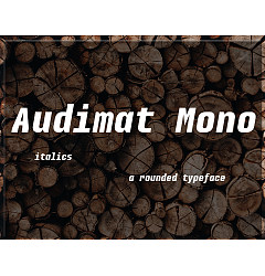 Permalink to Audimat Mono Font Download