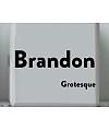 Brandon Grotesque Black Font Download