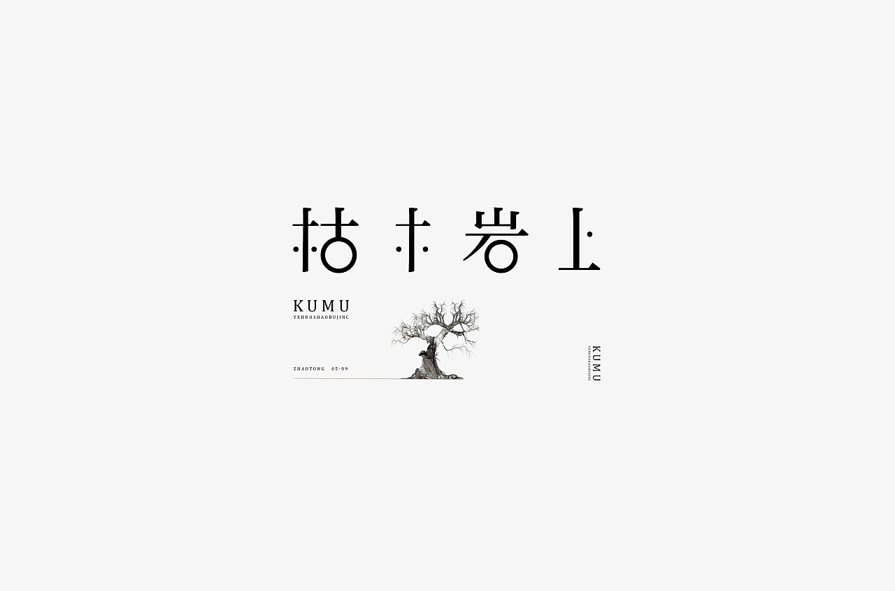 12P Chinese traditional calligraphy brush calligraphy font style appreciation #.1476