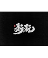 10P Chinese traditional calligraphy brush calligraphy font style appreciation #.1779
