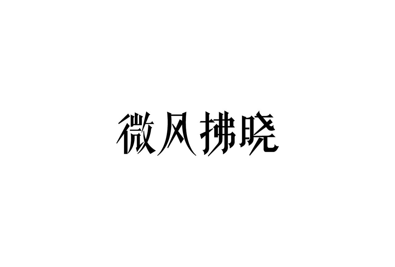 22P Creative Chinese font logo design scheme #.1780