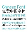 Zao Zi Gong Fang(Make Font )MFSongHe_Noncommercial-Regular-Simplified Chinese Fonts