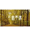 Chinese Creative Font Design-Small Fresh Font Design