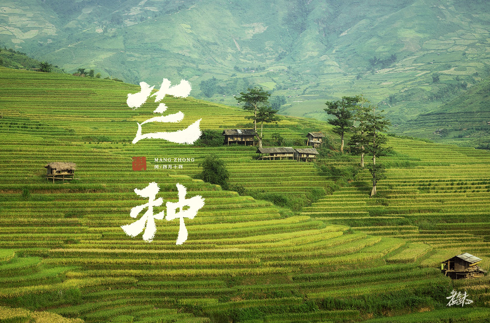 Creative font design with different styles and backgrounds based on the word Mangzhong