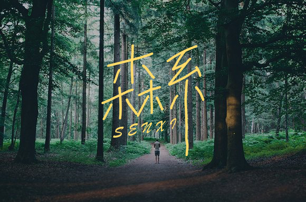 Creative font design with different styles and backgrounds based on the word Senxi