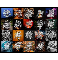 Permalink to 22P Chinese font design collection inspiration #.28