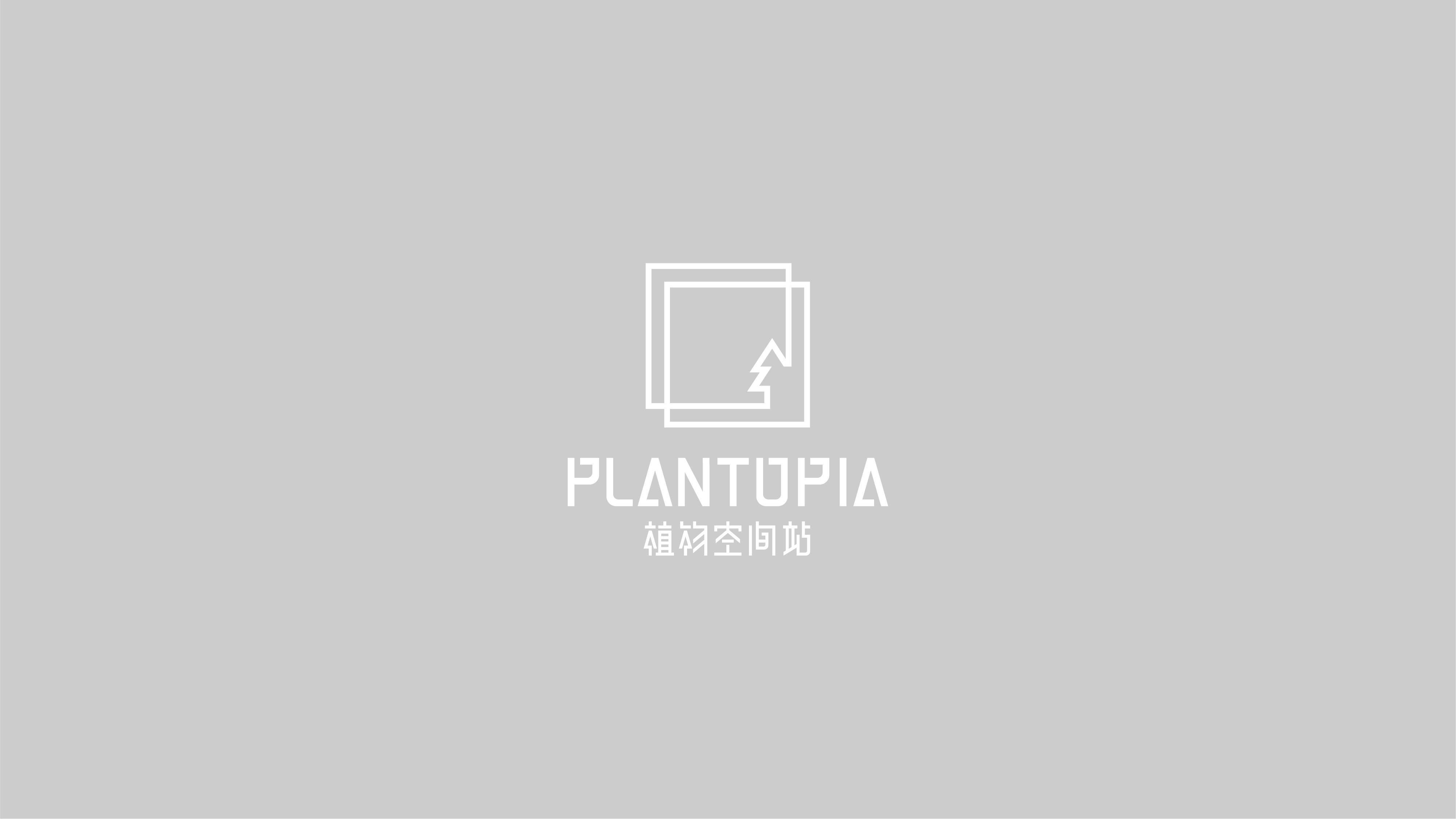 2020 Font/Brand LOGO Design Collection